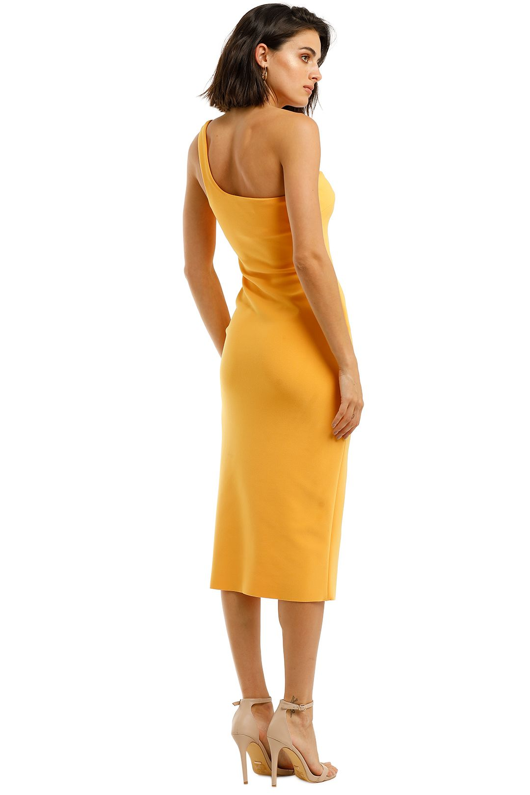 Bec-and-Bridge-Ariel-Midi-Dress-Mango-Back