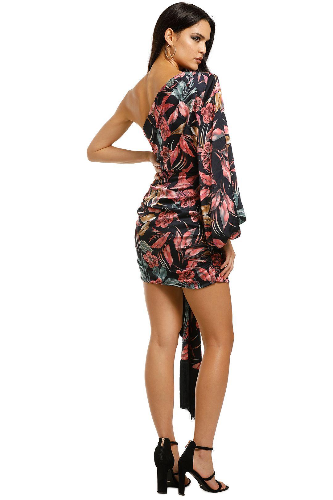 Bronx-and-Banco-Flamingo-Mini-Dress-Back