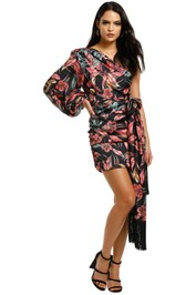Bronx-and-Banco-Flamingo-Mini-Dress-Front