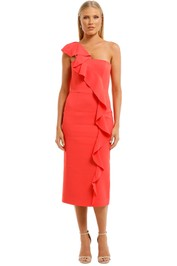 Ginger-and-Smart-Prospective-Ruffle-Dress-Front