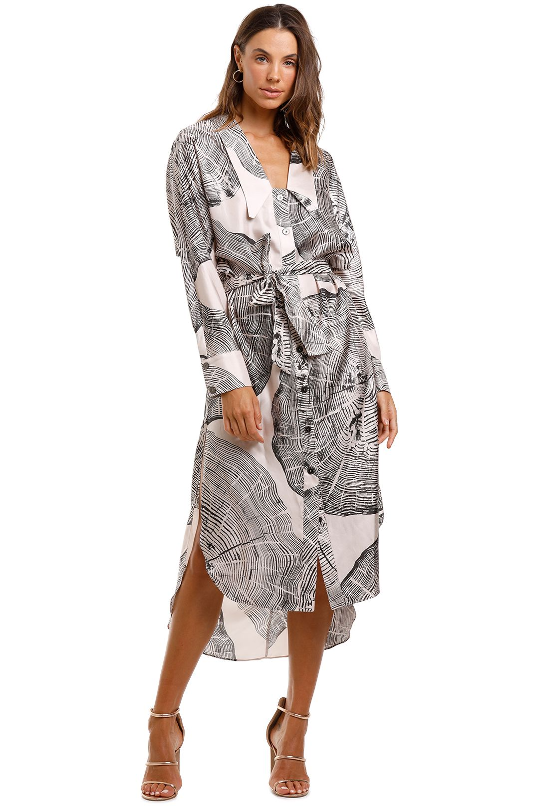 Ginger and Smart Concentric Dress Silk
