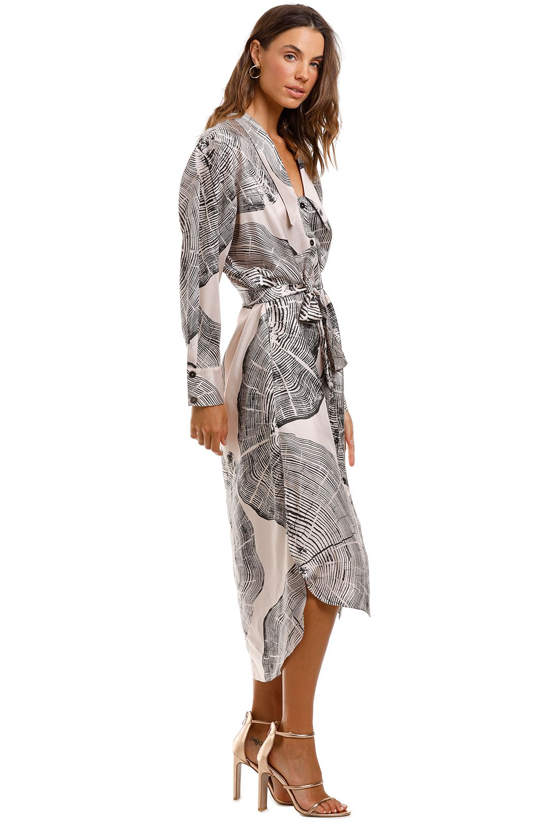 Ginger and Smart Concentric Shirt Dress
