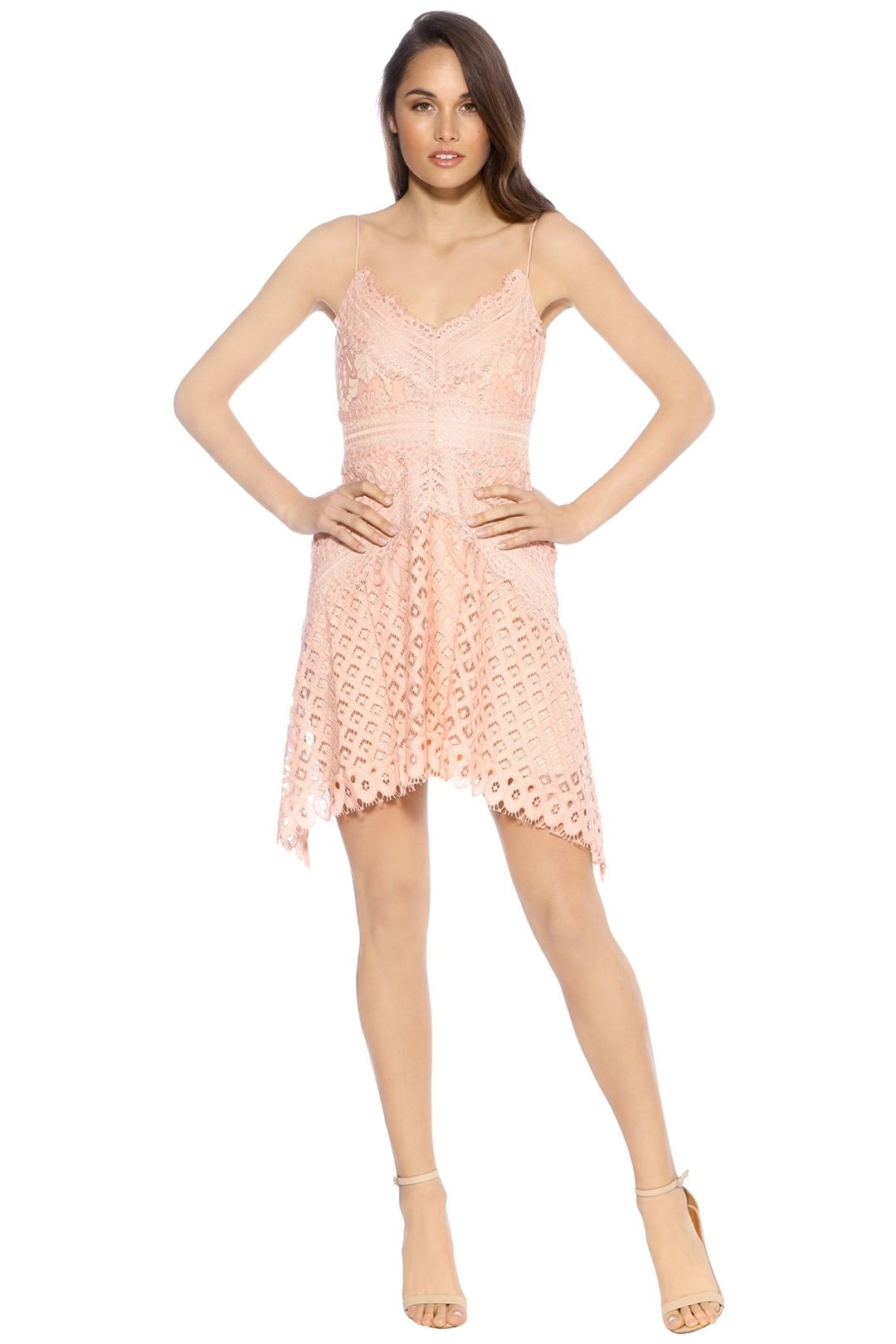 Keepsake The Label - Bridges Lace Mini Dress - Blush - Front