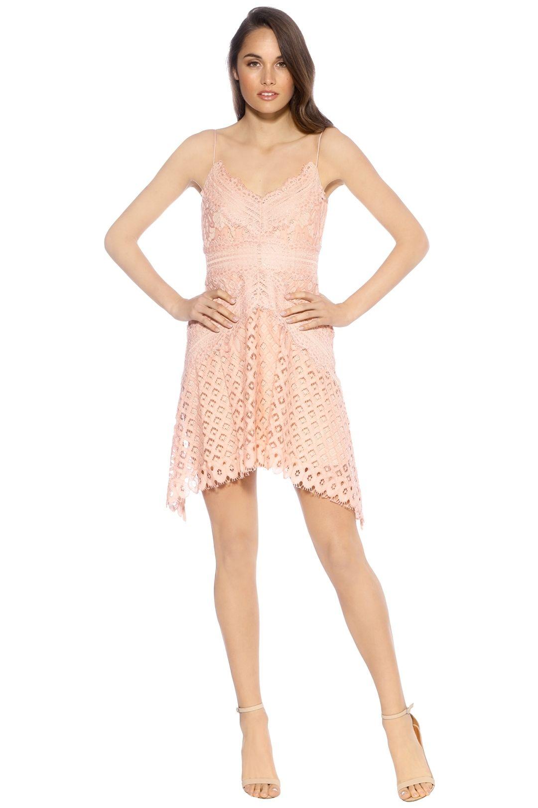 Keepsake The Label - Bridges Lace Mini Dress - Blush - Front