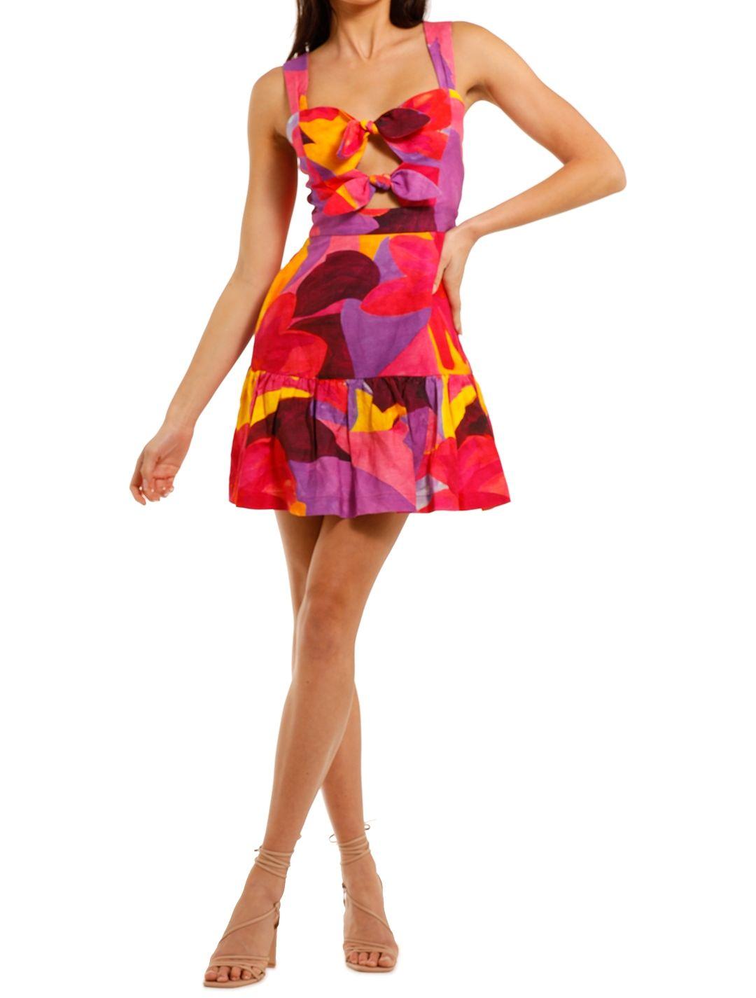 Rebecca Vallance Pablo Tie Mini Dress print multi