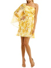 Talulah-Sunshine-Mini-Dress-Sunshine-Rose-Print-Front