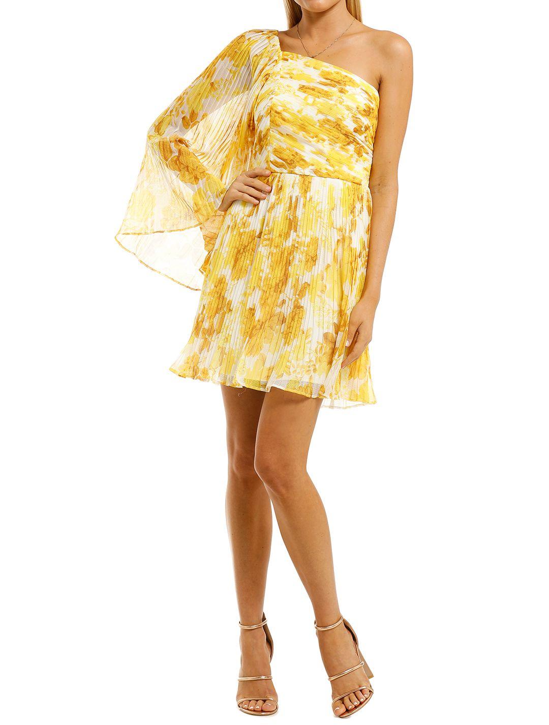 Talulah-Sunshine-Mini-Dress-Sunshine-Rose-Print-Front